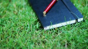 notebook_pen_grass_herbs_54705_602x339