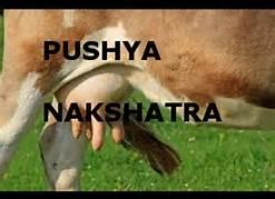 Pushya nakshatra